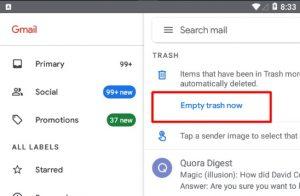 Empty trash now button gmail